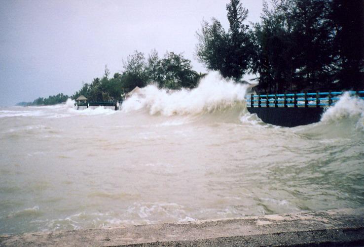 วิจัย'เมืองชายฝั่ง'ป้องกันการกัดเซาะ เตือน 30 ปีหน้า-น้ำทะลัก กทม.