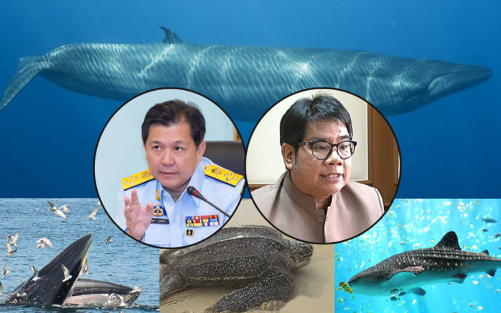 ทช.สัญญาจะร่วมผลักดัน ปลา-เต่า 4 ตัว เป็นสัตว์สงวนจนถึงที่สุด