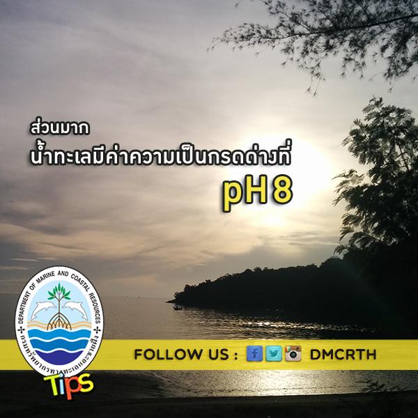 ค่า pH ของน้ำทะเล