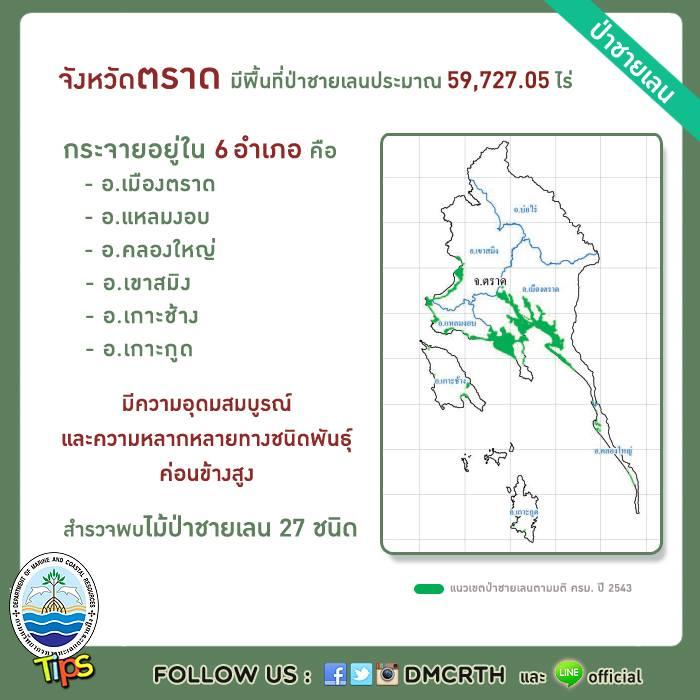 จังหวัดตราด มีพื้นที่ป่าชายเลนประมาณ 59,727.05 ไร่