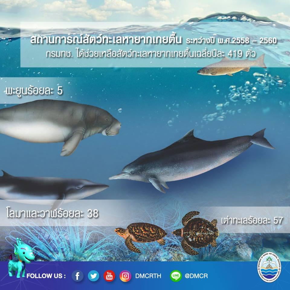 สถานการณ์สัตว์ทะเลหายากเกยตื้น ระหว่างปี 2558-2560