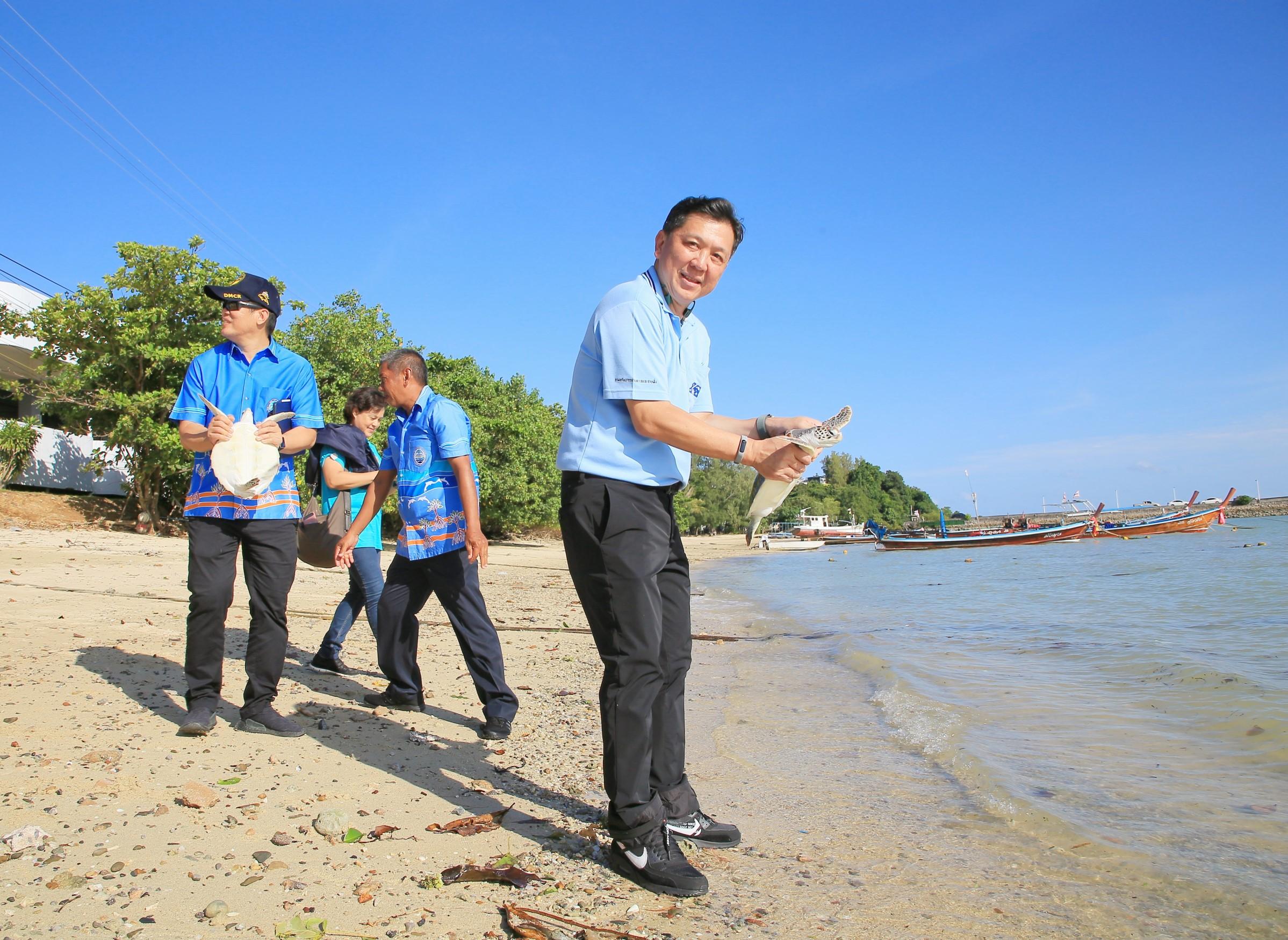 ทช.จัดกิจกรรมปล่อยเต่าทะเล เนื่องในวันแม่แห่งชาติ