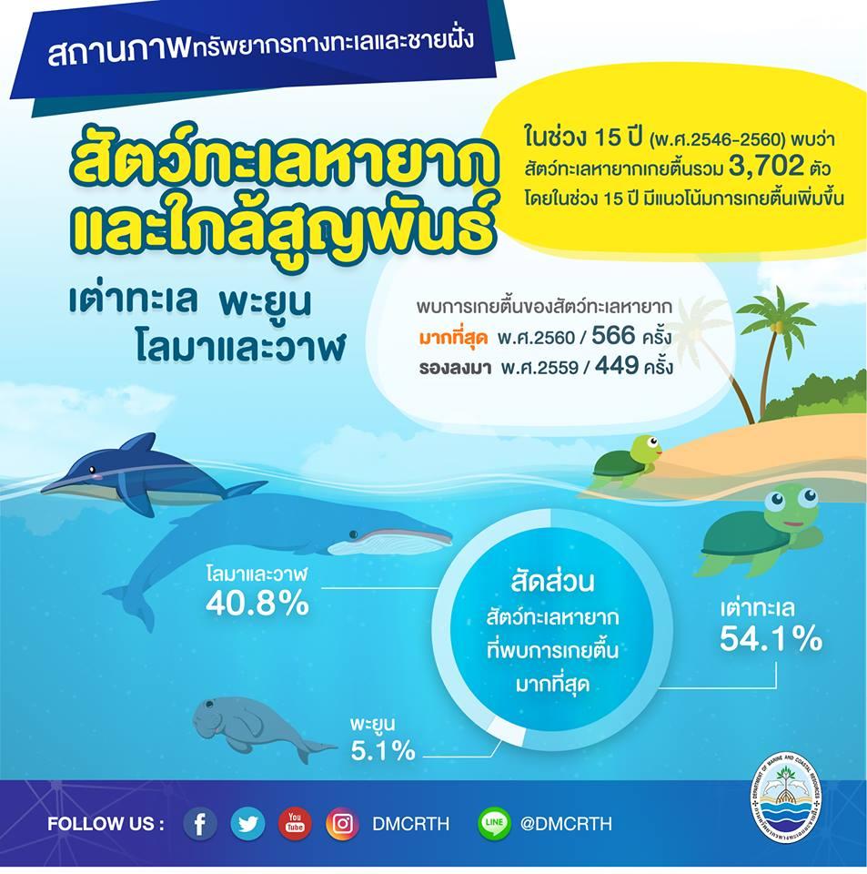 สถานการณ์ ทช. : สัตว์ทะเลหายากของไทย