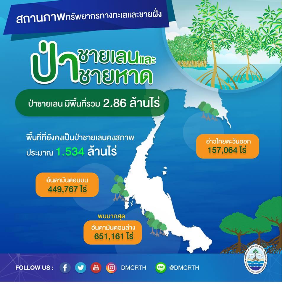 สถานการณ์ ทช. : ป่าชายเลนและป่าชายหาดของไทย
