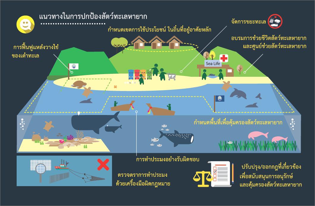 แนวทางในการป้องกันสัตว์ทะเลหายาก