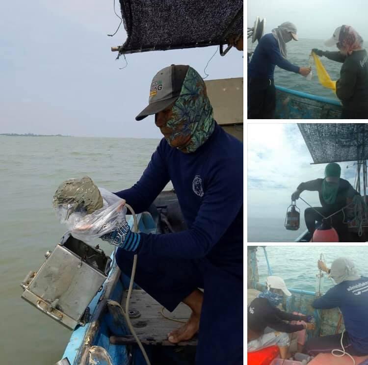 อ่าวไทยตอนล่าง คุณภาพน้ำทะเลอยู่ในเกณฑ์มาตรฐาน