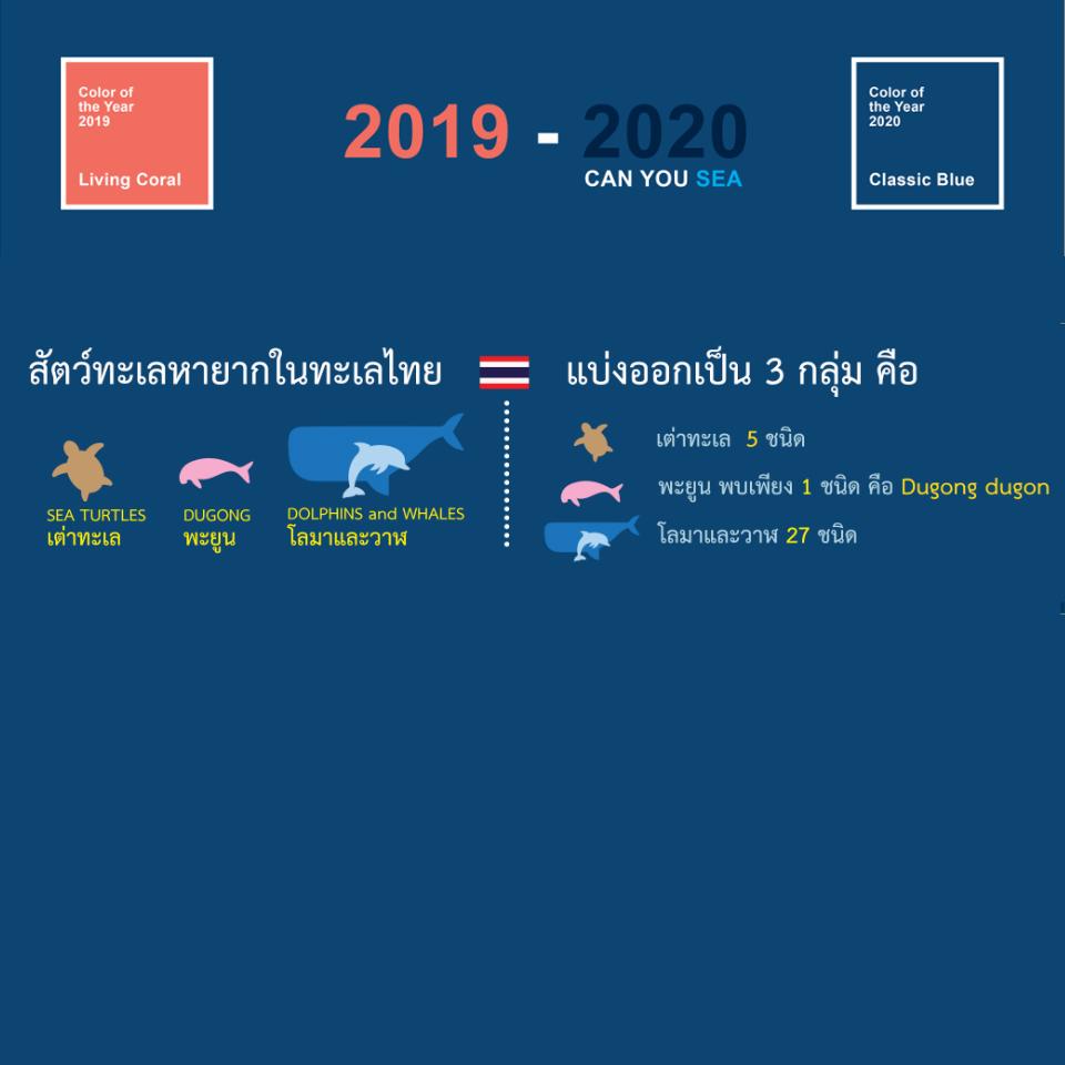 สัตว์ทะเลหายากในประเทศไทย