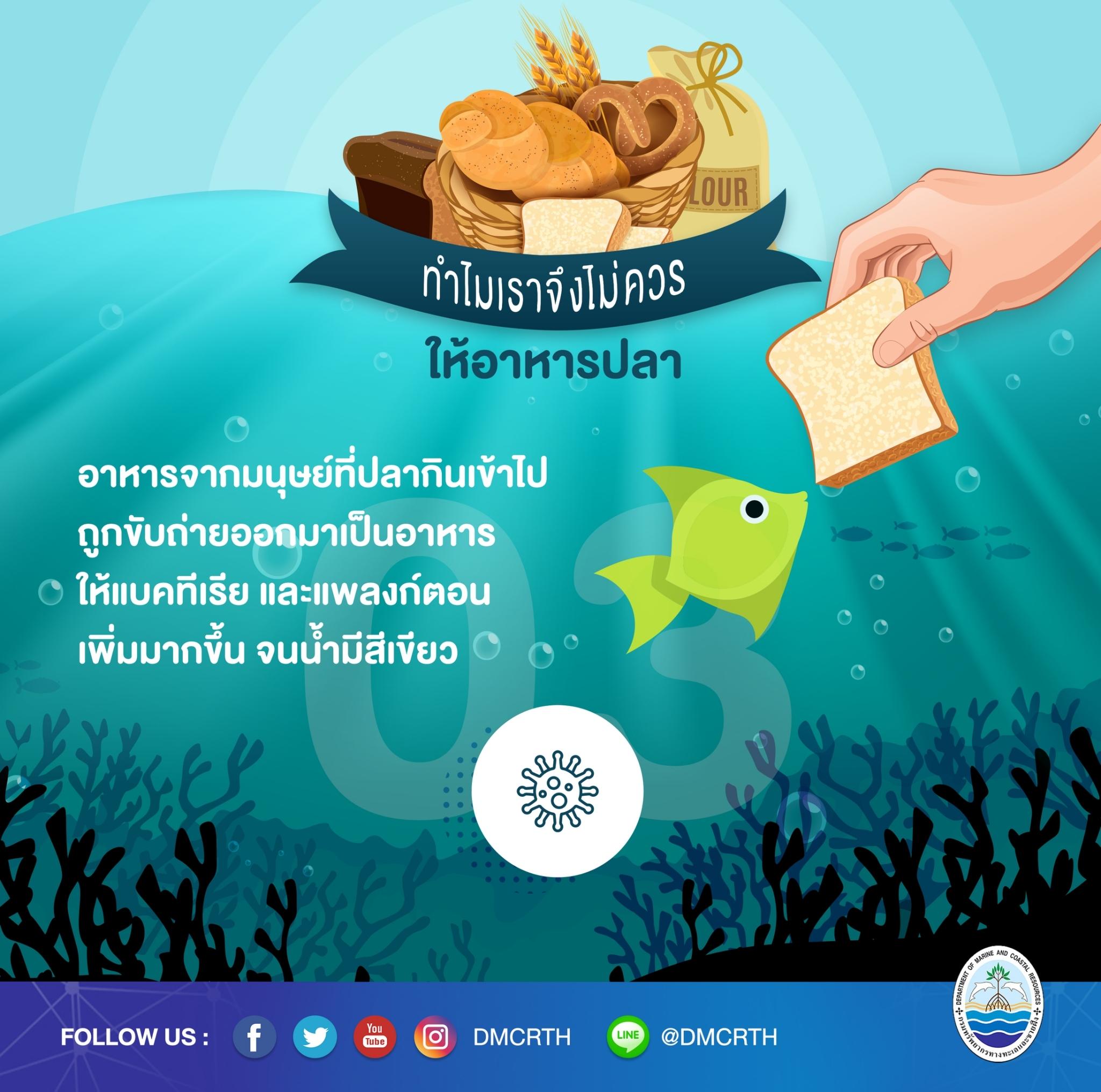 ทำไมจึงควรหยุดให้อาหารปลาในแนวปะการัง ตอนที่๓