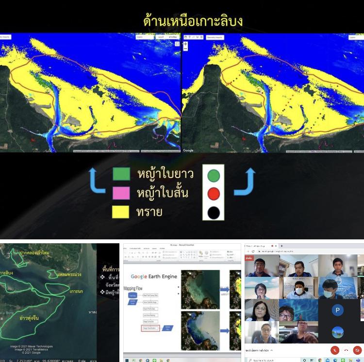 ประชุมผู้เชี่ยวชาญ ยกระดับการสำรวจแหล่งหญ้าทะเลในน่านน้ำไทย