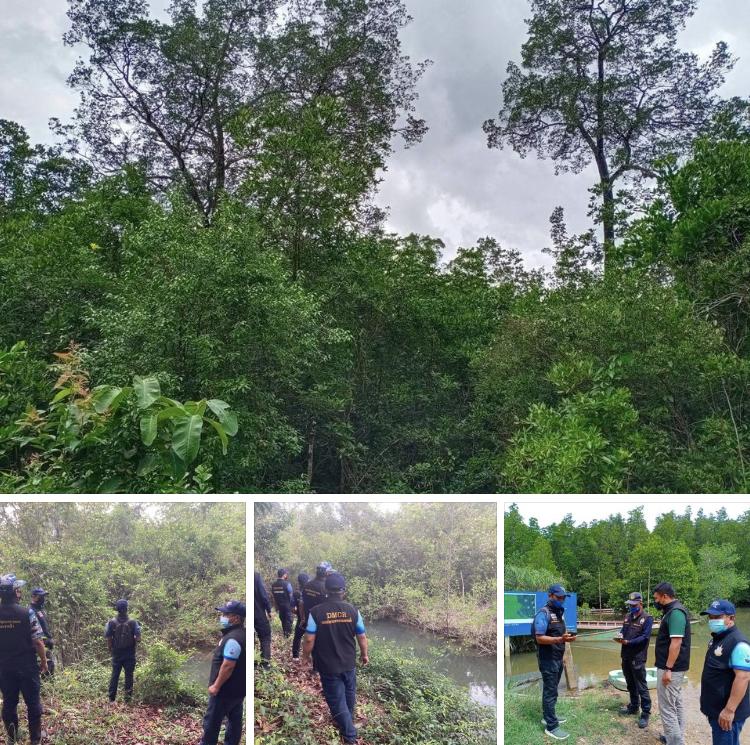 ลาดตะเวนป่าสงวนแห่งชาติป่าเลนโครงการกิ่งอำเภอคุระบุรี ปลอดภัย