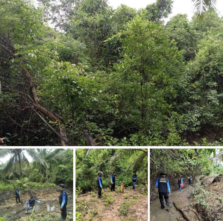 ลาดตะเวนป่าคลองสามช่องและป่าคลองกระโสม ปลอดภัยไร้บุกรุก