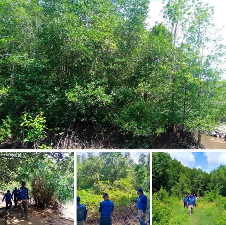 ลาดตะเวนป่าสงวนกิ่งอำเภอคุระบุรี สถานการณ์ปกติ