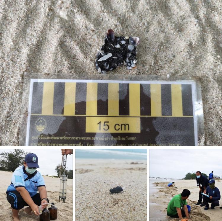 ผลการตรวจคุณภาพน้ำ จากการแจ้งพบคราบน้ำมันหาดแม่รำพึง