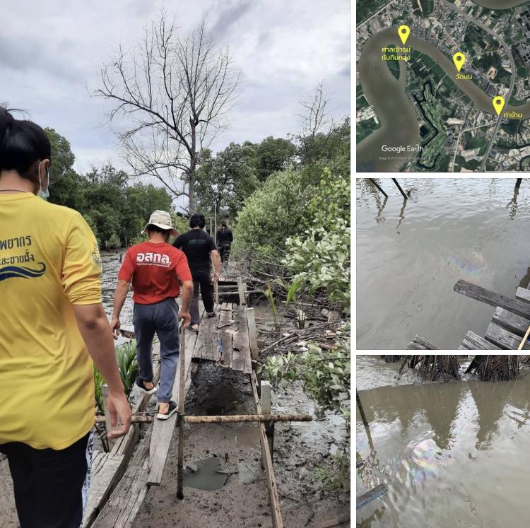 เหตุน้ำมันรั่ว เริ่มกระทบบ้านปลาธนาคารปูและป่าชายเลนบางปะกง
