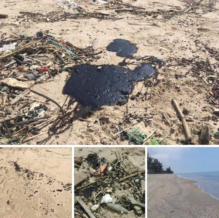 ตรวจก้อนน้ำมันหาดมหาราชและหาดกระบองเพชร สงขลา