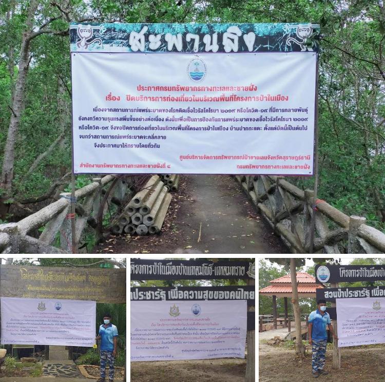 พัฒนาป่าในเมืองสุราษฎร์ธานี รอเปิดเมื่อปลอดภัย