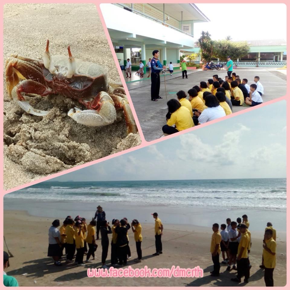 อนุรักษ์หาดสะพลี หาดที่สะอาดเป็นอันดับ ๑ ของประเทศ