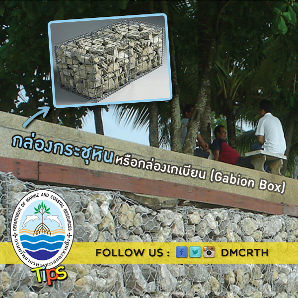 กล่องกระชุหิน หรือกล่องเกเบียน (Gabion Box)