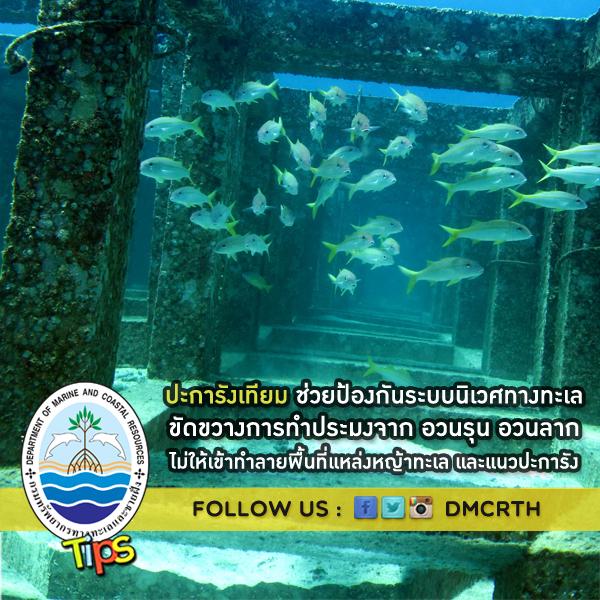 ปะการังเทียม ช่วยป้องกันระบบนิเวศทางทะเล