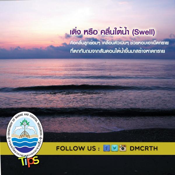 เดิ่ง หรือ คลื่นใต้น้ำ (Swell)