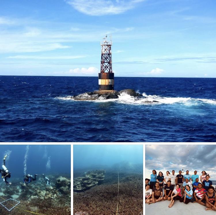 ทีมดำน้ำเฮ ปะการังทะเลเกาะโลซินฟื้นตัวสมบูรณ์ดังเดิม